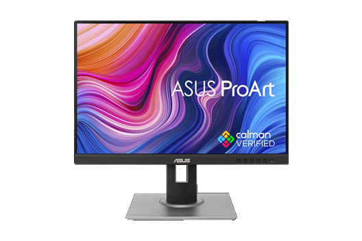 ASUS ProArt Display - PA248QV