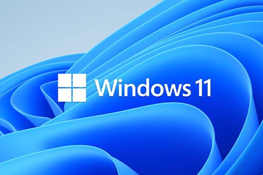 MS Windows 11 Pro Workstation