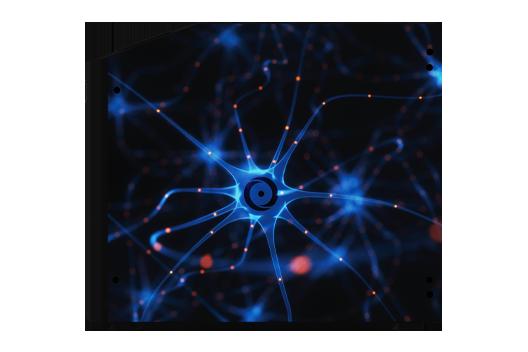 Blue Neuron (Millennium and Genesis)